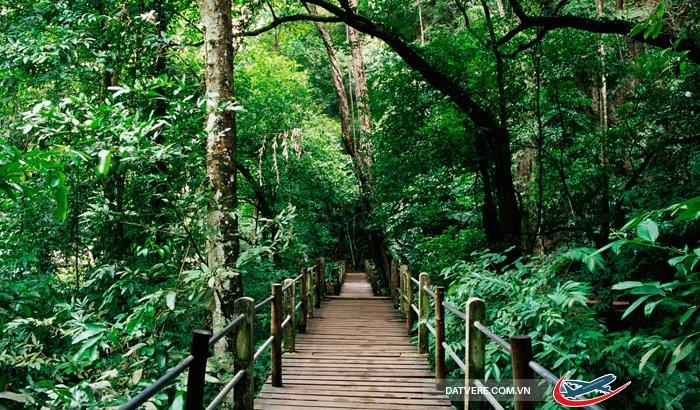 Khu dự trữ rừng Bukit Nanas