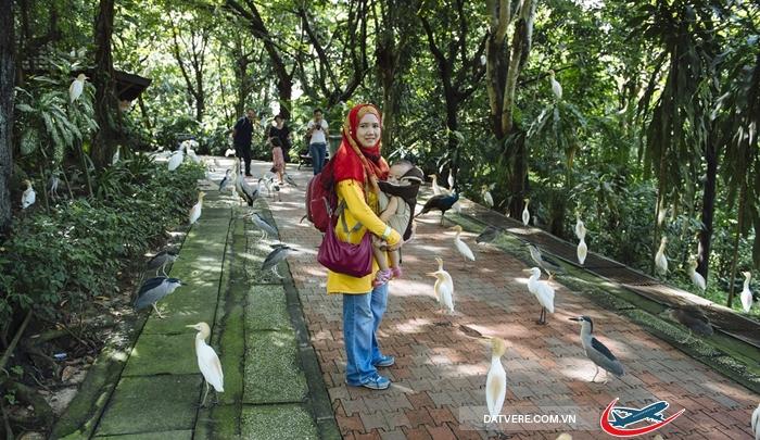 Công viên Bird Park