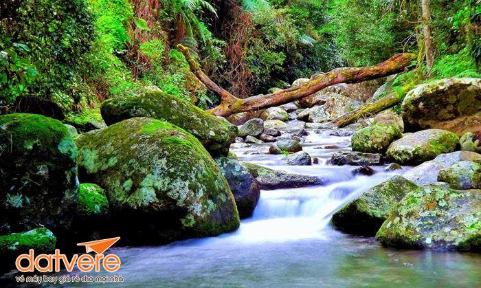 Cảnh đẹp ở Lakelands Coombabah