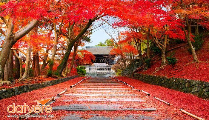Lựa chọn thời điểm du lịch Nhật Bản