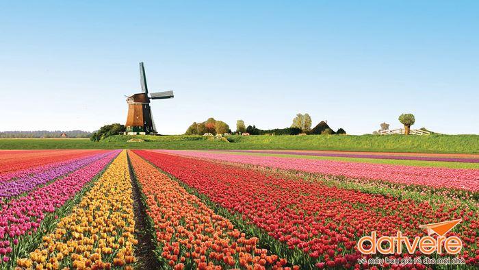 Trải nghiệm du lịch Hà Lan
